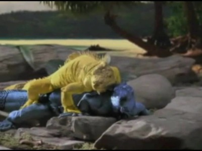 How to Make a Green Iguana