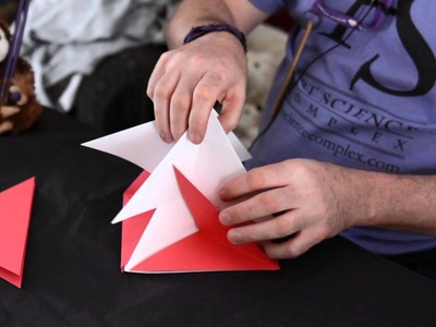 3-D Origami Project : Origami Techniques