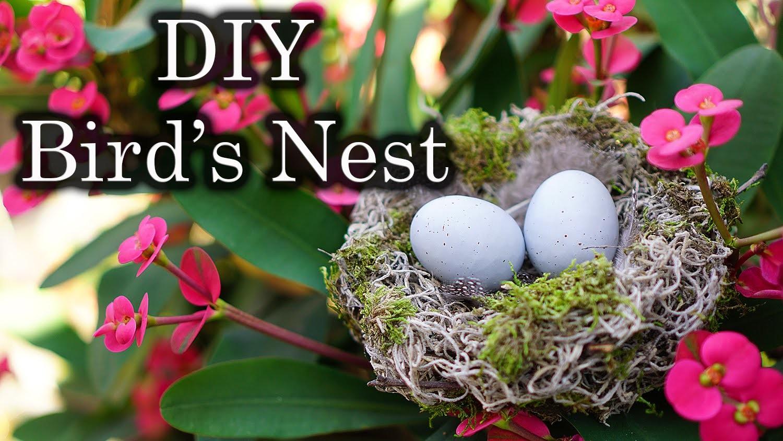 Easter. Spring Decor: DIY Bird's Nest with Spanish Moss
