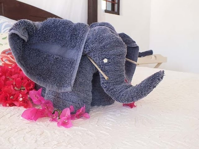 How to make an elephant from towels