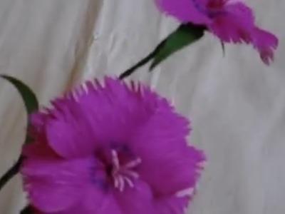 Paper Flower - Dianthus. Pinks