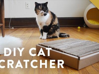 DIY Cardboard Cat Scratcher with Pudge