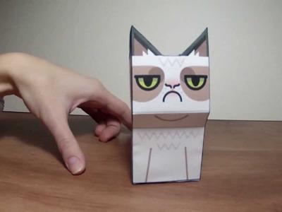 Grumpy Cat DIY