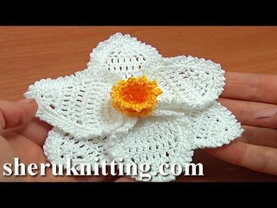 Crochet 3D Narcissus Flower Tutorial 68 Part 3 of 3 Crochet Daffodil