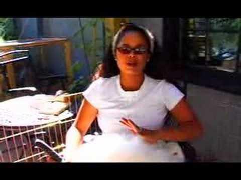 Garden Girl TV: How to Shear a Rabbit for spinning and knitting angora yarn