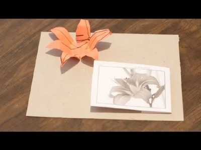 How to Make Tiger Lilies Out of Paper : Paper Crafts