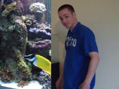 HOW TO: Set up a saltwater aquarium