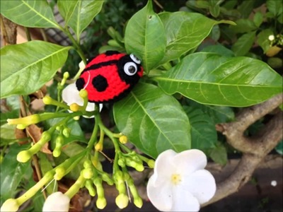 How to Crochet Little Ladybird (Free Amigurumi pattern)