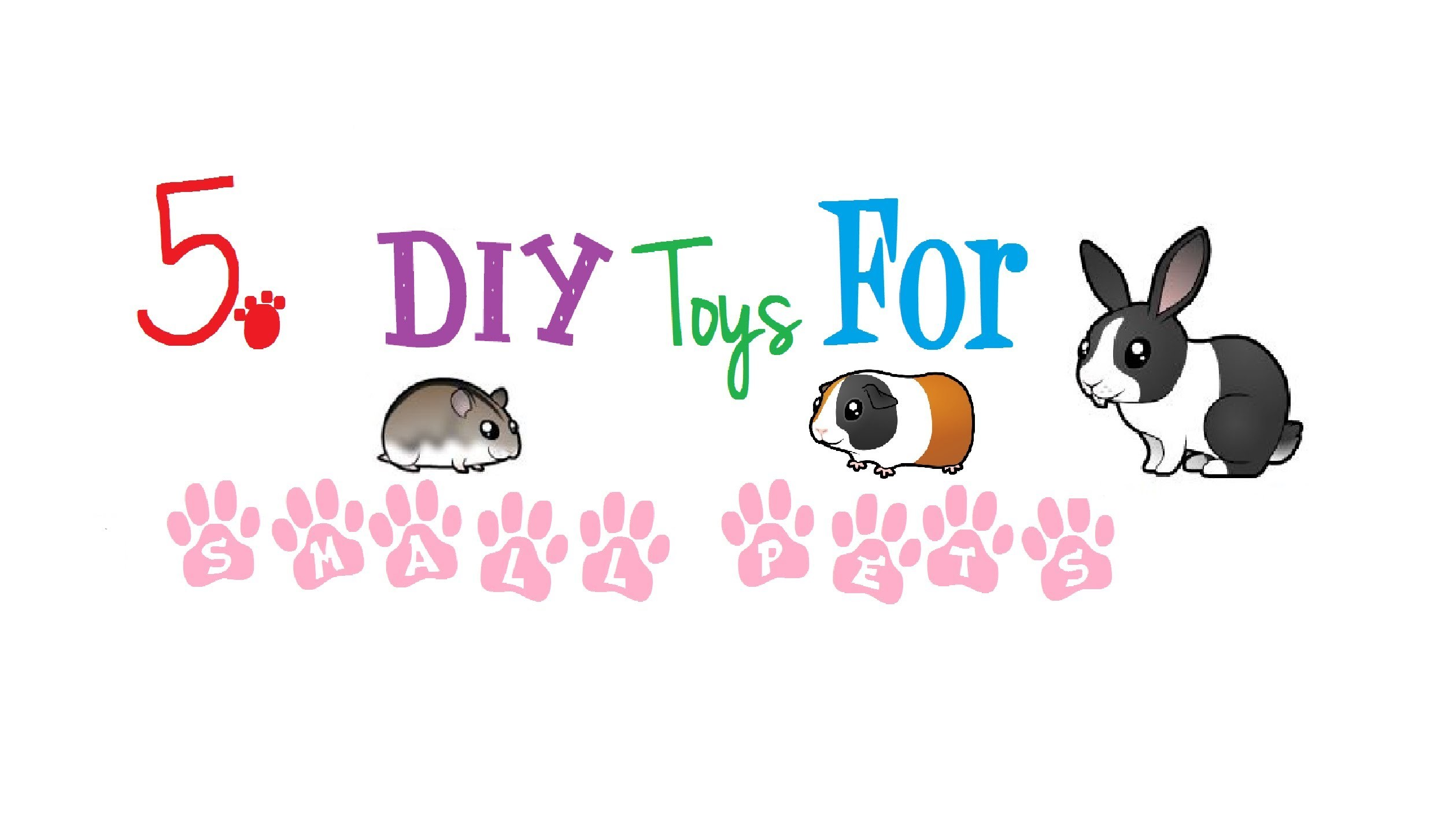 5 DIY Toys For Small Pets!