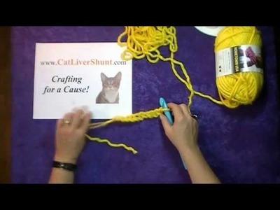 First Row Slip Stitch Crochet with www.CatLiverShunt.com