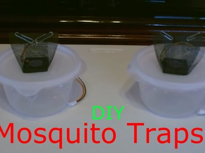 Homemade Mosquito Trap! - The DIY Mosquito Trap (improved!) - Easy DIY