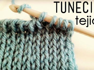"""Punto """"TEJIDO"""" Tunecino (Crochet Tunecino)"""