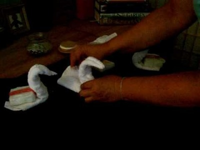How to make a Swan Origami Washcloth