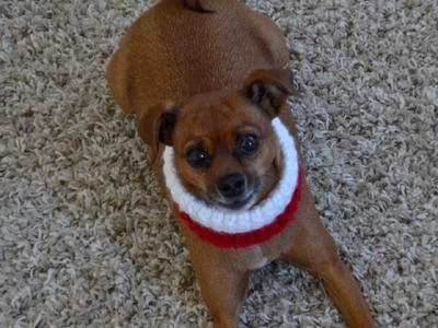 How to Crochet a Santa Style Neck Warmer for small dog breeds