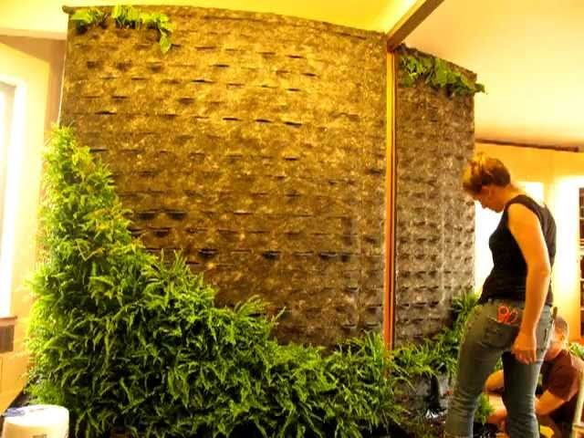 DIY How to Making of Patrick Blanc Style Green wall Vertical Garden