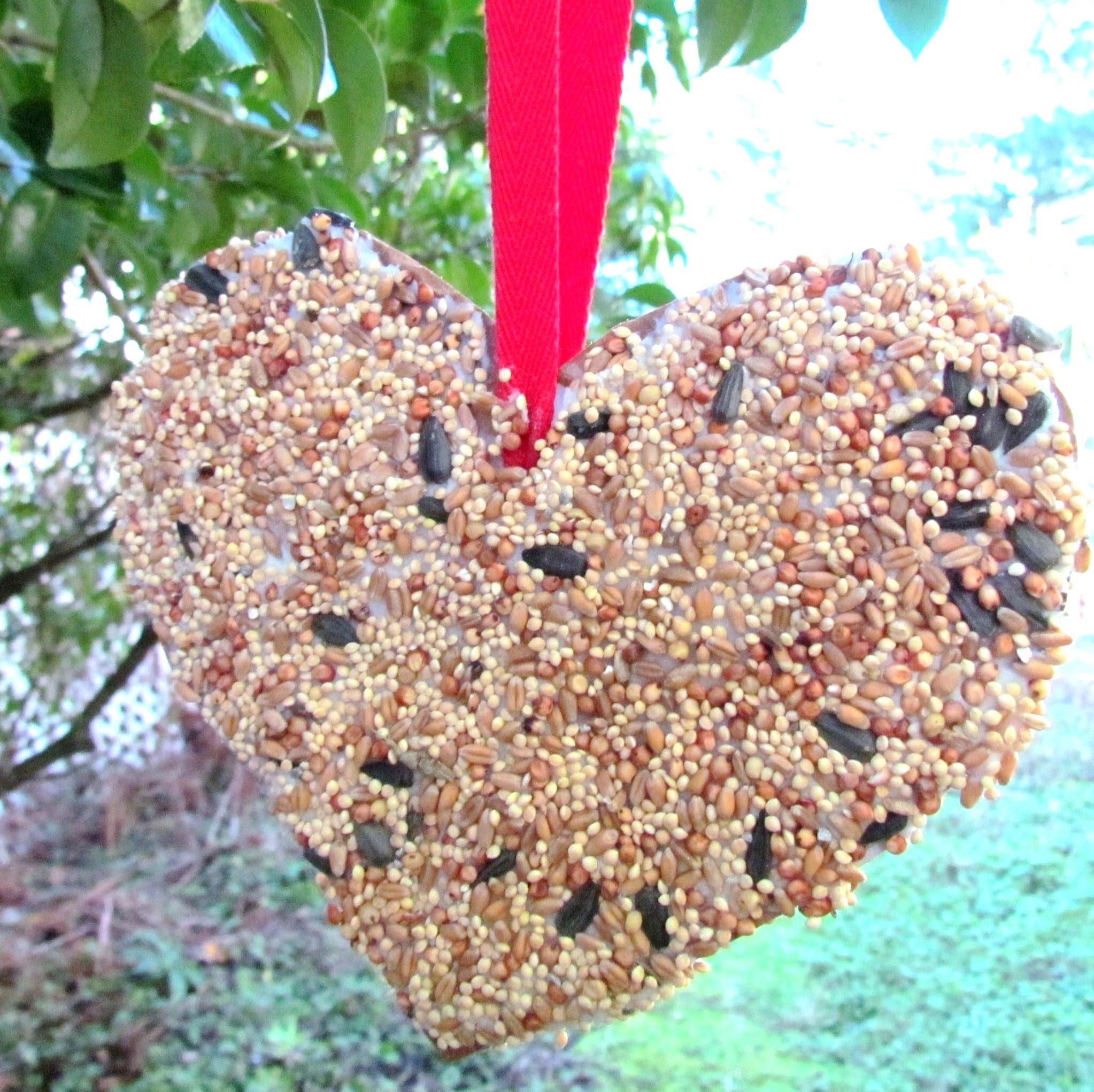 How to make a Bird Feeder Valentine's Day Heart Craft