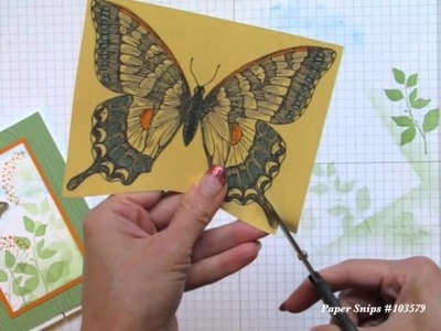 Finger Tips for Paper Crafting Art: Beautiful Butterfly Card