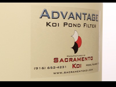 Best Bead Filter for Your Koi Pond - Advantage Bead Filter