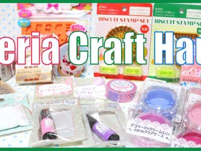 Seria Craft Haul