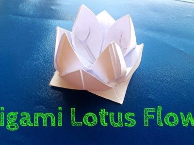 Origami Flower (Easy Lotus Model)