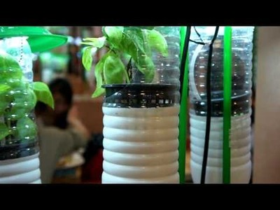 Vertical Gardening Ideas - Build Your Indoor Garden DIY Project with using Plastic Bottles