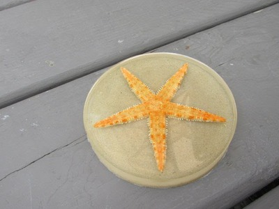 How to Make a Starfish Beach Coaster Craft Tutorial   Another Coaster Friday