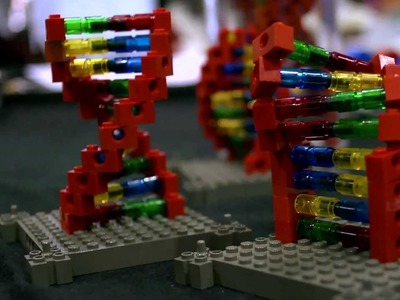 Building Molecular Models from Lego: DNA Makers