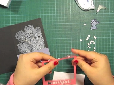 Peacock feather - card making tutorial, using a polaroid frame
