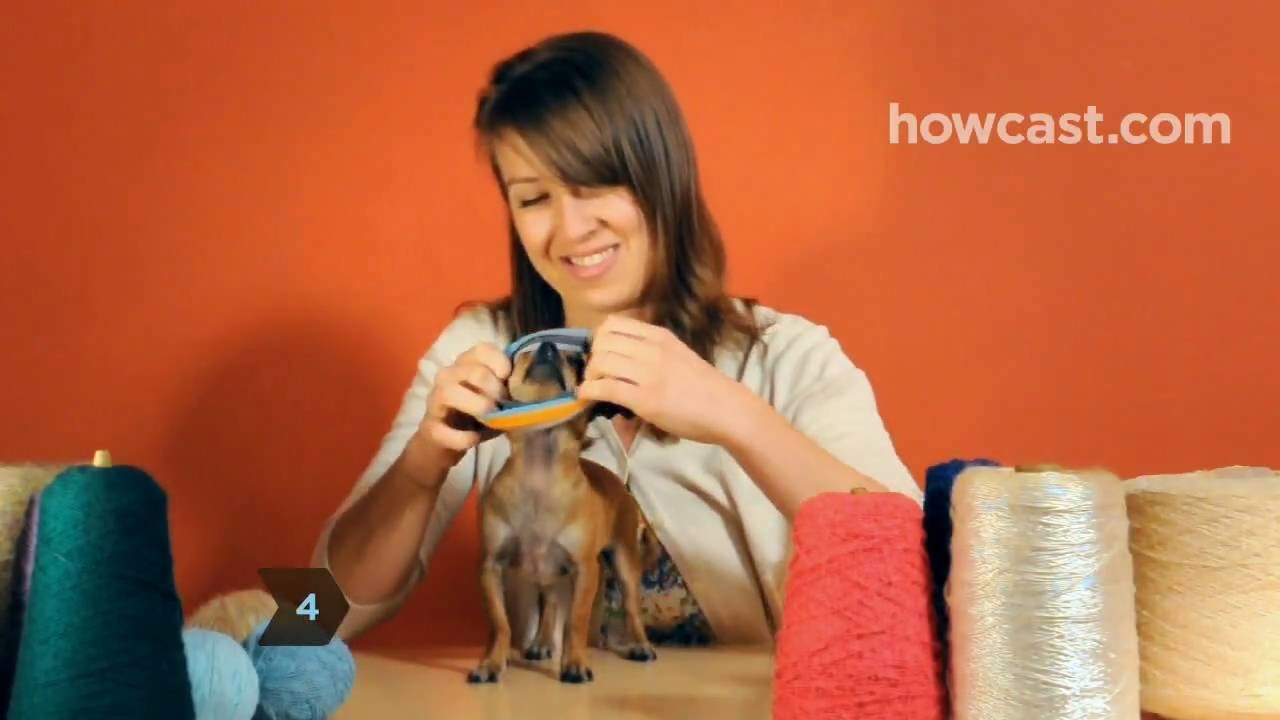 How to Turn a Large Sock into a Tiny Dog Sweater