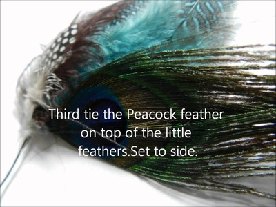 DIY Peacock Feather Hair Clip In Extension