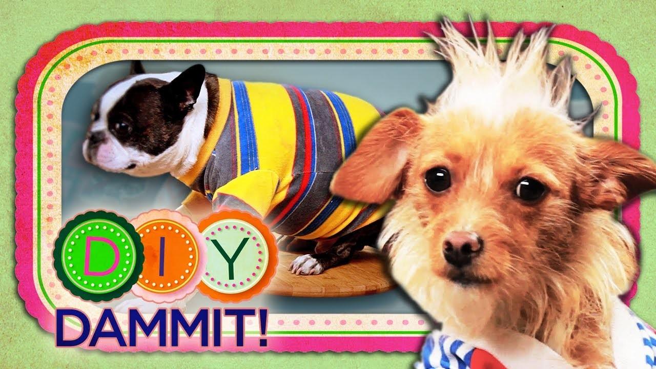 HOW-TO Make Dog Shirts - DIY DAMMIT!