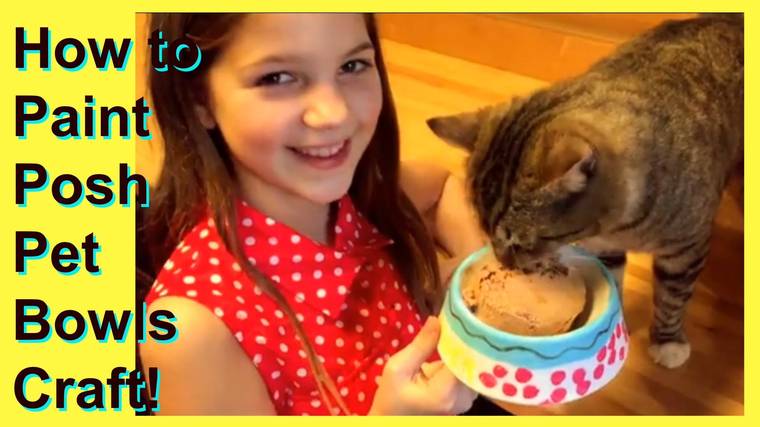 DIY Pet Projects Dog and Cat Bowls Craft | Paint Personalized Posh Pet Bowls