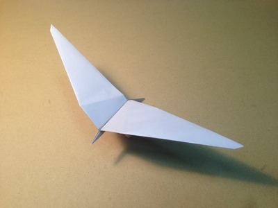 How to Make a Paper Plane. Origami Bird. Common Gull