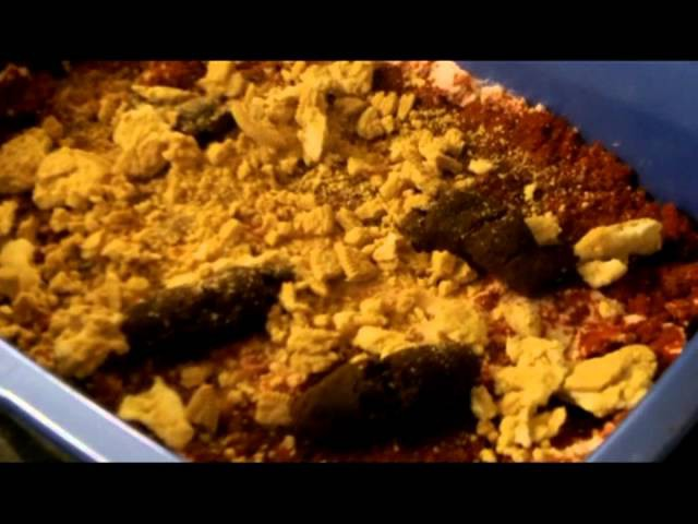 Kitty Litter Cake- craft DIY for teen party
