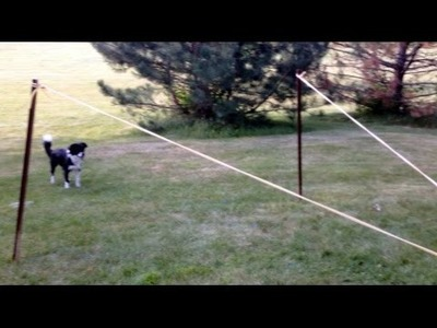 Extreme Launcher - Fetch a Pup, Launch a Water Balloon - Fetchinator 6000! How To - DIY