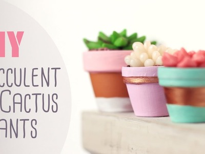 DIY: Succulent & Cactus Plants | Cute & Happy Home Decor Ideas
