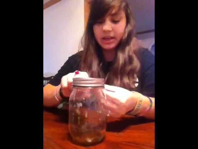 How to make a hillbilly wine glass