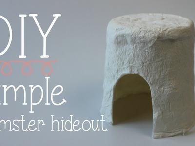 DIY simple Hamster hideout