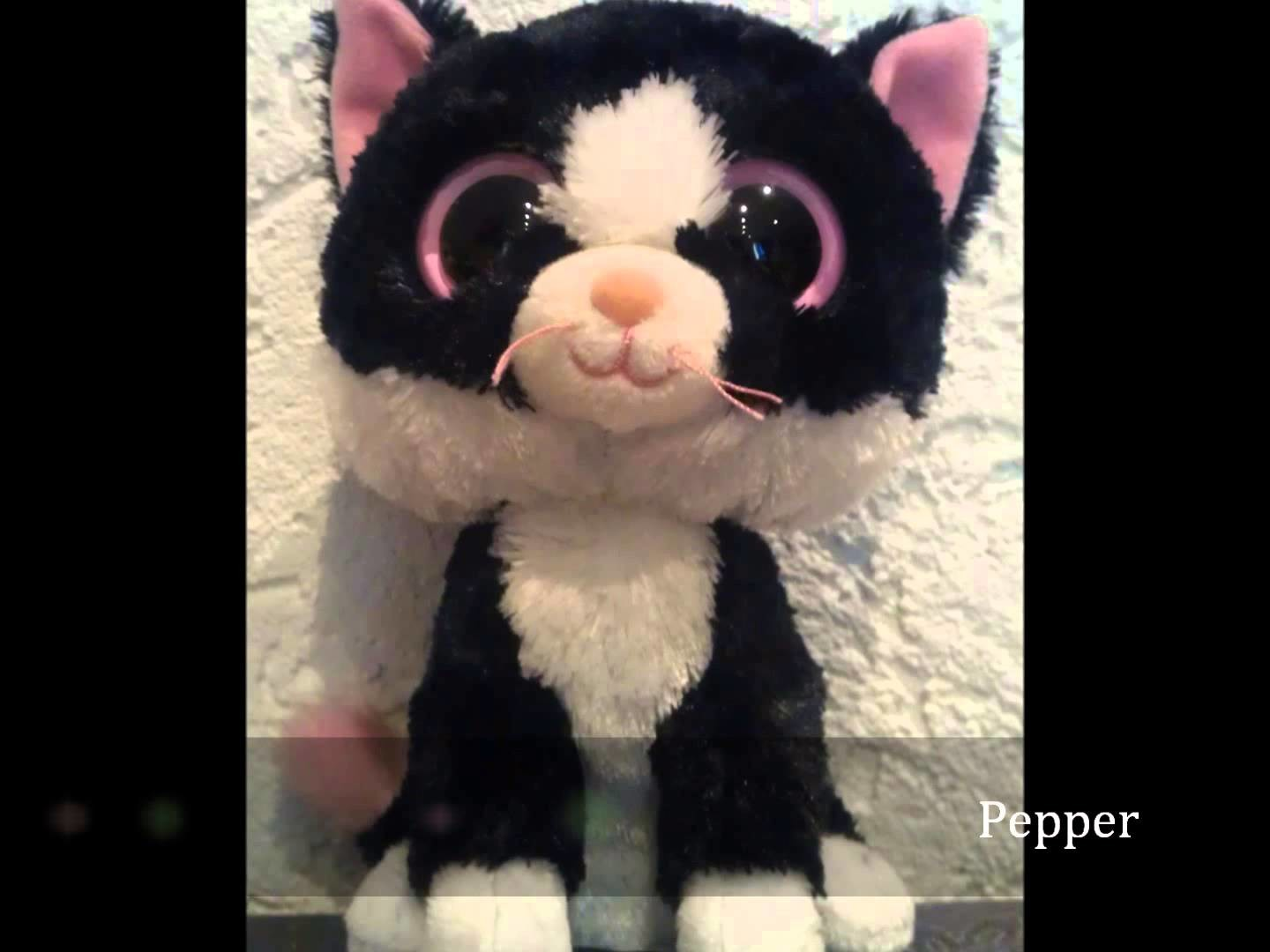 My big Beanie Boo Collection #142