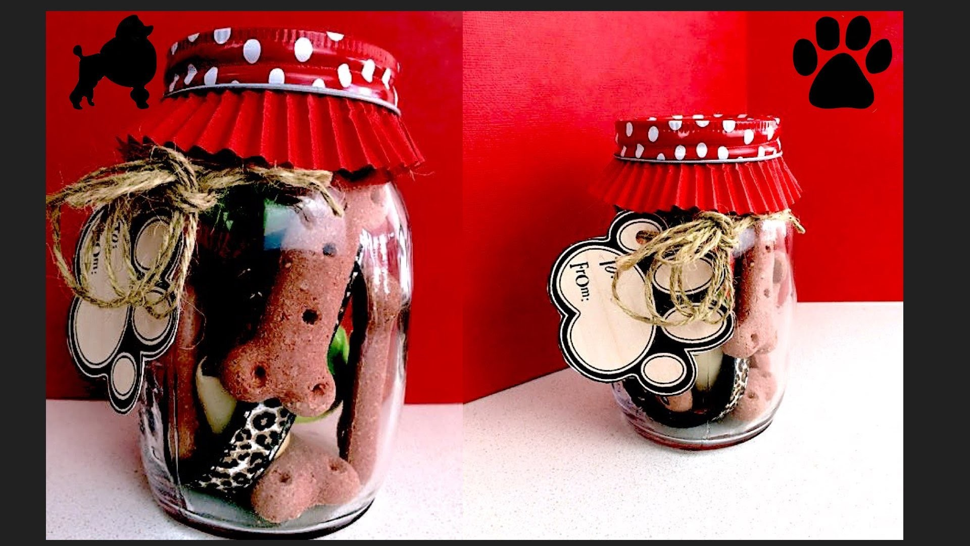 MASON JAR DOG GIFT  - PUPPY BIRTHDAY PRESENT - DIY Dog Food by Cooking For Dogs