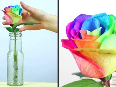 DIY Craft Ideas | DIY Rainbow Roses - Room Decor Ideas by Bubbles