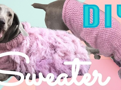 Knit a sweater for your dog! :D   ( part 2)