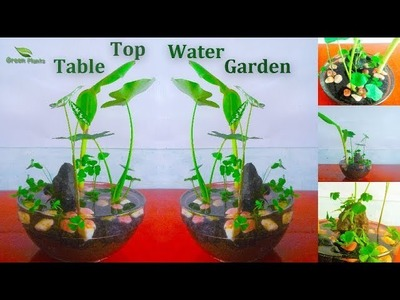 Table Top Water Garden Pond |  Small Water Garden.GREN PLANTS