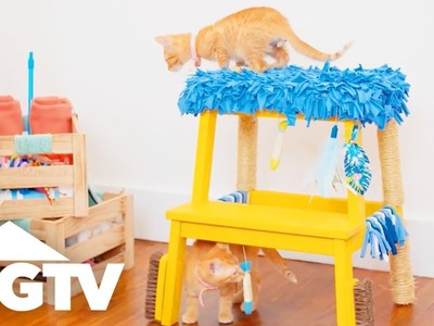 Step Stool Turned DIY Cat Tree - Easy Does It - HGTV