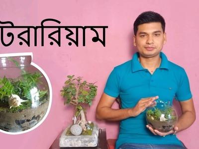 How to Make a Terrarium in Bangla
