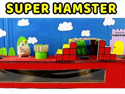 Making Super Mario Course For Cute Hamster- DIY Hamster