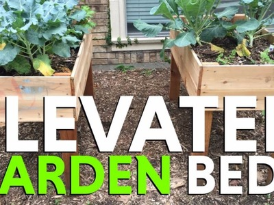 How to Build An Elevated Garden Bed Out Of Red Cedar