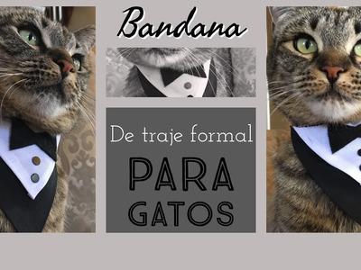 Bandana de traje formal para Gatos