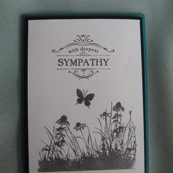 Sympathy       Sy15TF