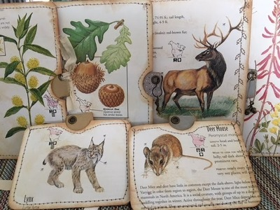 Tutorial - Making Botanical Tags and Tag Pockets Using Project Life Cards and Tim Holtz